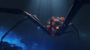 Giant Spider ZnS BO3
