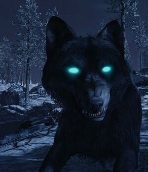 Dire Wolf BOIII