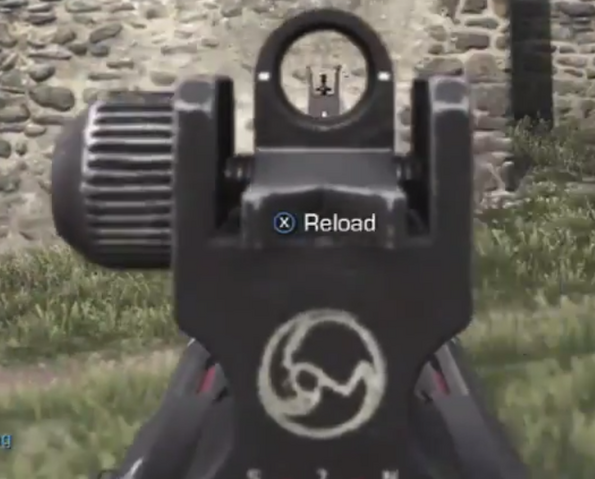File:Tac 12 iron sights CoDG.png