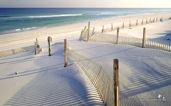 White-sandy-beach-wallpaper-1680x1050