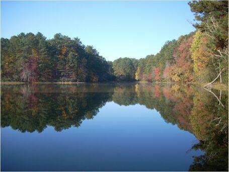 Open Lake image
