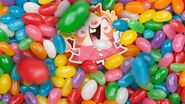 Tiffi under the candies