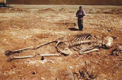 Skeleton in Sardinia