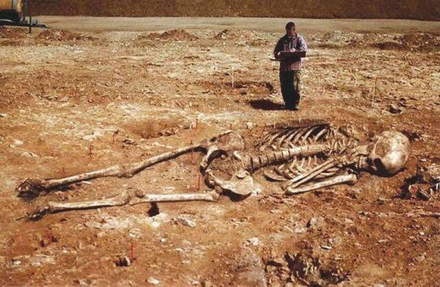 File:Skeleton in Sardinia.jpg