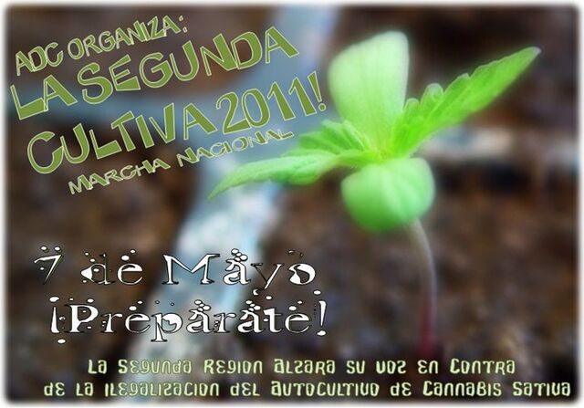 File:Antofagasta 2011 GMM Chile 2.jpg