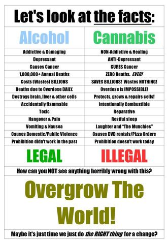 File:Alcohol versus cannabis. Long list.jpg