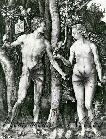 File:Adam-eve-cannabis.jpg