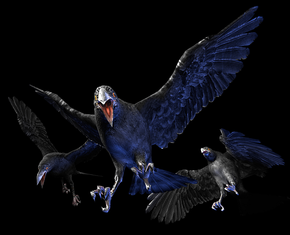 File:RE0 Crows.png