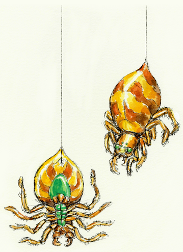 File:KoD Giant Spider.png