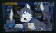 Cat-Ride