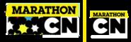Check It Marathon 2015