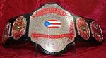 WWC Puerto Rico Heavyweight Championship