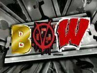 BVW Logo