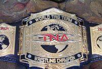 TNA Tags 002