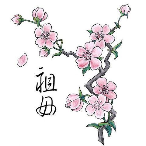 File:Cherry-Blossoms.jpg