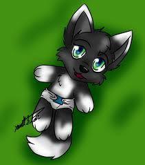 File:Wolf pup 2.jpg