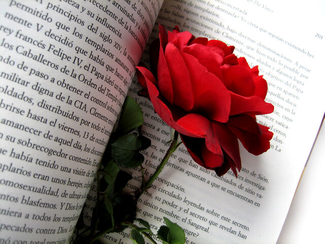 File:Rose and book.jpg