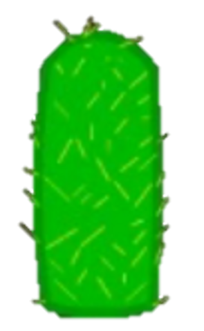 File:Cactus Body.png