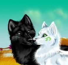 File:Wolf 5.jpg