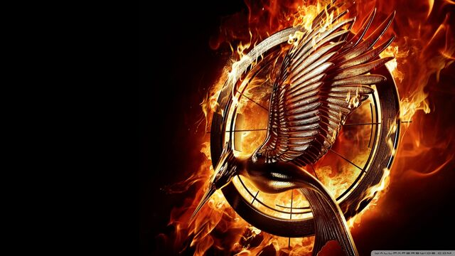 File:The hunger games catching fire movie-wallpaper-1920x1080.jpg