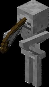 336px-Skeleton