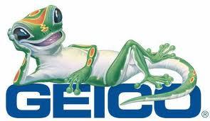 Lizard geicogecko 2