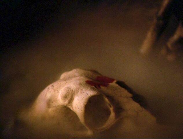 File:4x16-CauldronSkull.jpg