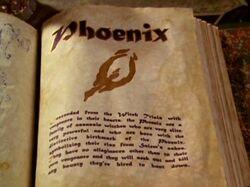 Phoenix BOS
