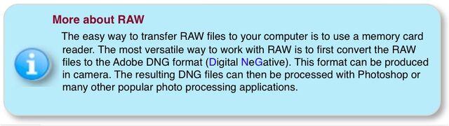 File:Info -RAW.jpg