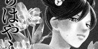 Shinobu Wakamiya/Image Gallery