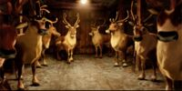 Santa Claus's reindeer's great-great-grandchildren