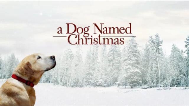 File:A Dog Named Christmas.jpg