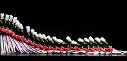 800px-Rockettes 4158770026 4a61916952-1-