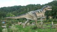 Baltow,Poland Tyrannosaurus