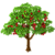 Brazilian Cherry Tree-icon