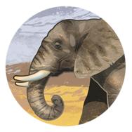 File:Ivory (Civ5).png