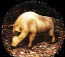 Truffles (Civ5)