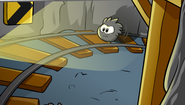 Black-puffle-cartsurfing