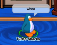 Turbo Sharks Whoa