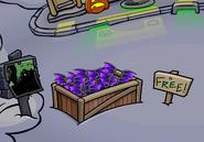 Purple Bat WIngs As Free ittem