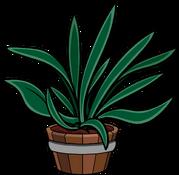 Spikeyplant