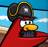 Rockhopper sea migrator