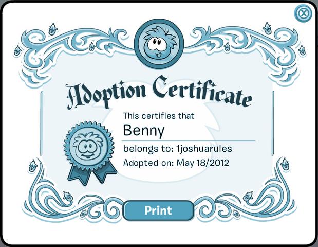 File:BennyCertificate.png
