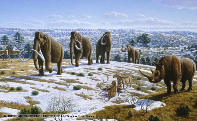 File:Last ice age.jpg