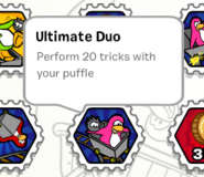Ultimate duo stamp book
