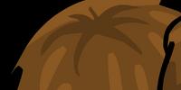 Brown Pompoms