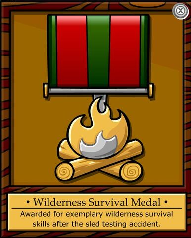 File:Wilderness Survival Medal.jpg