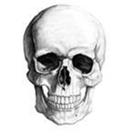 File:MyRealisticSkull.png