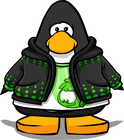File:Flit Hoodie from a Player Card.PNG