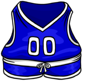 BlueBasketballJersey